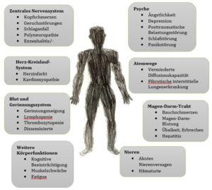 Betroffene Organe Covid-19